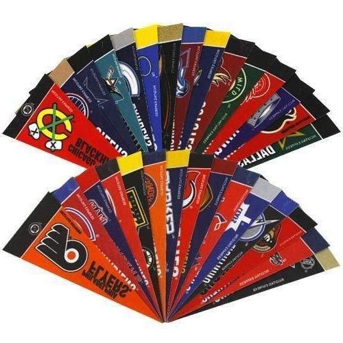NHL Complete Team 4x9 Mini